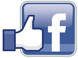 like_facebook_petit